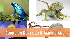 10 Best books on reptiles and amphibians