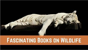 Best fascinating books on Wildlife for animal lovers