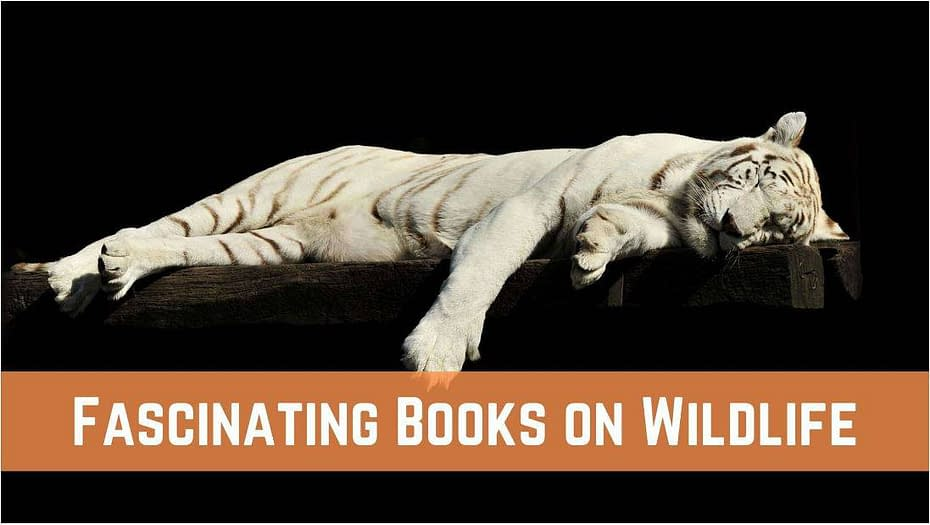 Best fascinating books on Wildlife for animal lovers