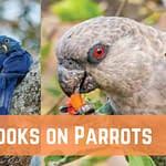Best Books on Parrots for Bird Lovers