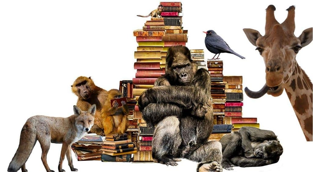 best animal books
